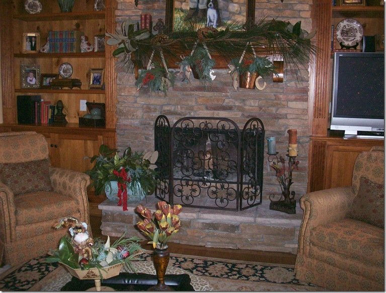 Holiday Home Tour 2010 023