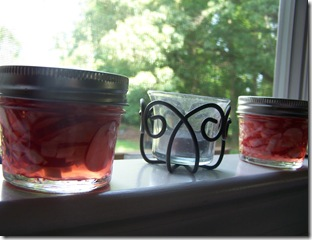 Pickled Radishes 018