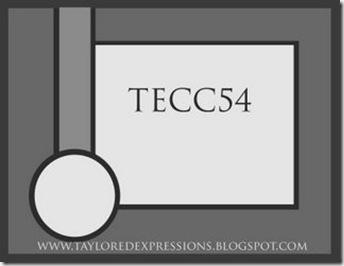 TECC54(sketch)