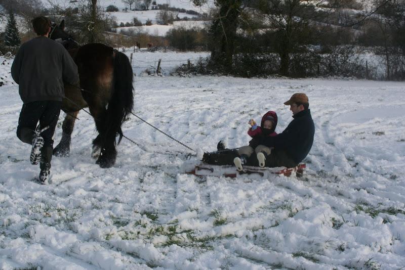 Le  calvados sous la neige... les chevaux s'éclatent! IMG_5257
