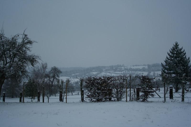 Le  calvados sous la neige... les chevaux s'éclatent! IMG_5065