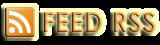 vai di fretta? leggi i feed RSS