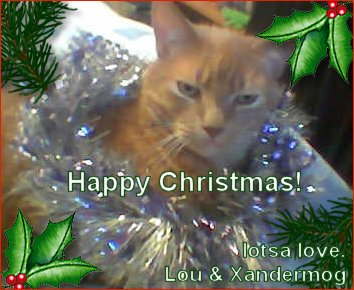 Happy Christmas from Lou and Xandermog