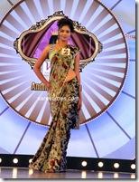 Miss Andhra Pradesh 2010 Contest-sarees