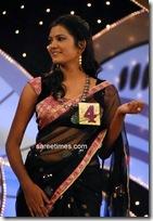 Miss Andhra Pradesh 2010 Contest-sarees (2)