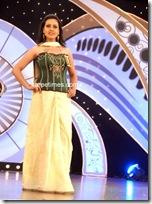 Miss Andhra Pradesh 2010 Contest-sarees (7)
