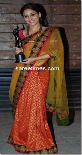 Vidya-Balan-Sabyasachi-Designer-saree-Film-Fare-Awards-2010