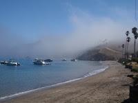 P9254762.JPG (Two Harbors, California, United States) Photo