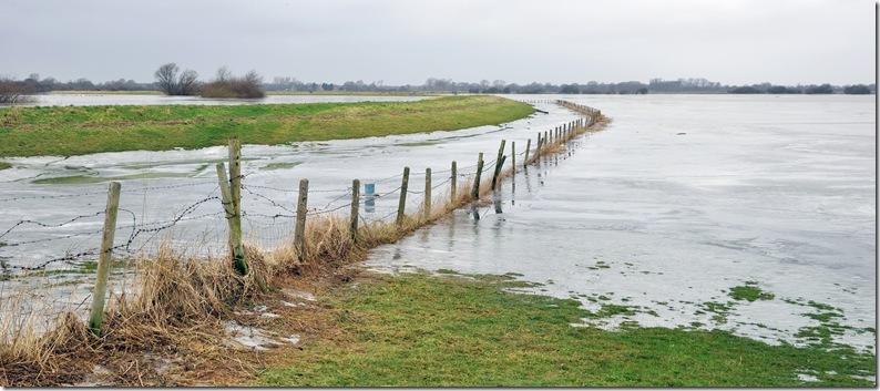 river derwent floodplain colour view copy