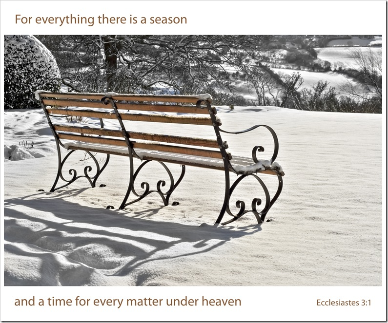 bench at st oswalds in snow bw for everything there is a season copy