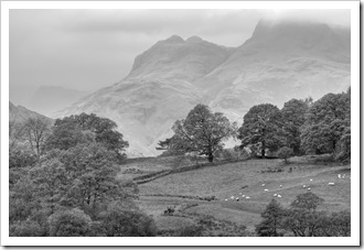 view from little langdale tarn to the langdale pikes in monochrome