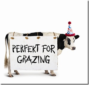 partytraycow