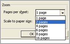 03 - 2 Pages