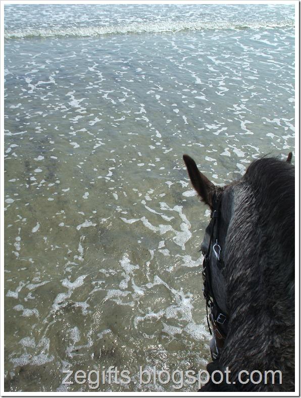 April10-Beach 010