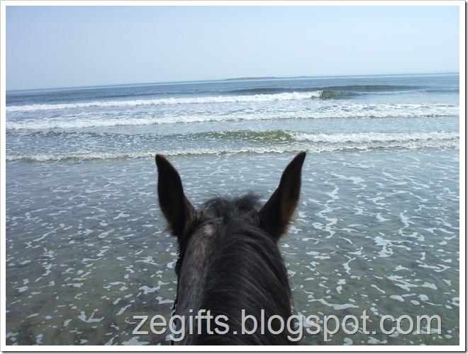 April10-Beach 012