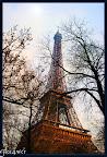 Flo14wer-Paris45.jpg