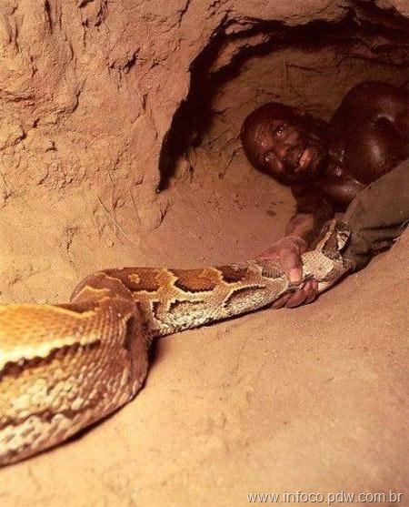 cacador-anacondas-6
