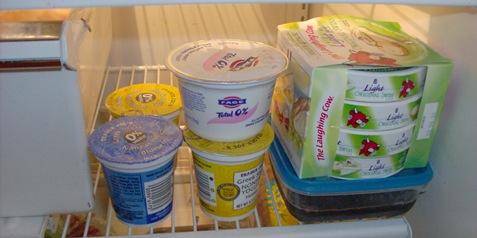 fridge 009