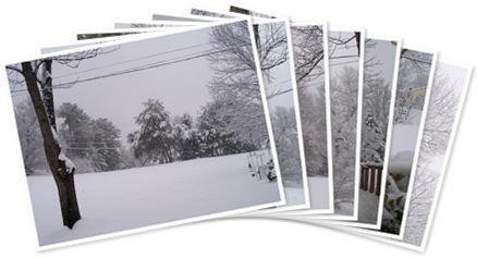 View Snowed In Again- Feb 2010