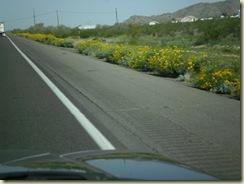 day trip to Phoenix 008