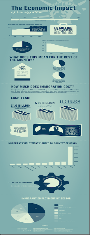 mint-immigration-infographic