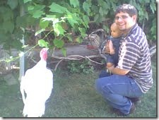 arthur and the turkey