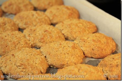 oatcookie2