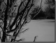 cold01062010-2