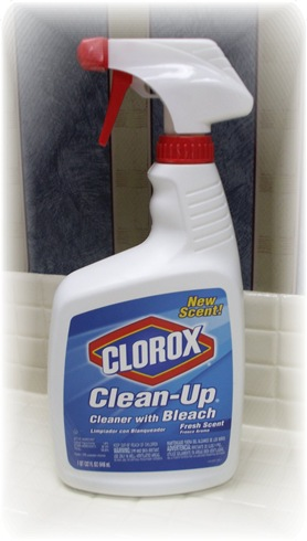 Clorox Touch Up