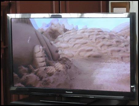 3-D TV