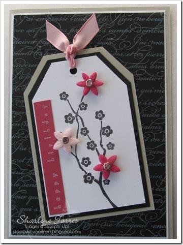Mum's bday card 2010