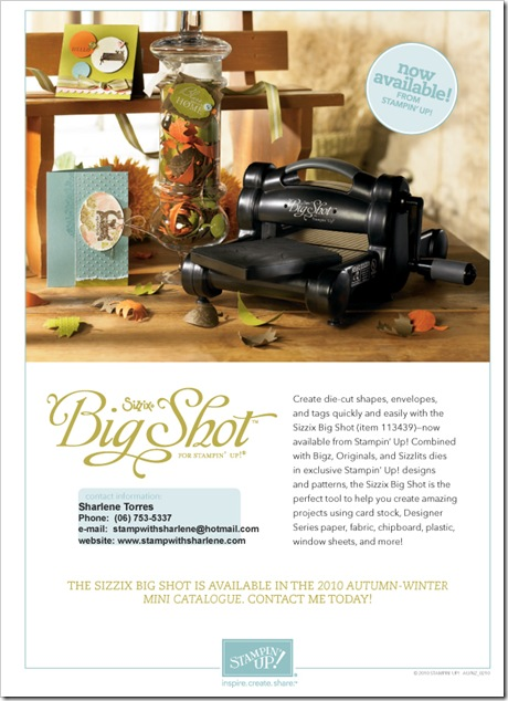 Big Shot flyer 2010