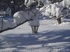 winter '09-'10 004