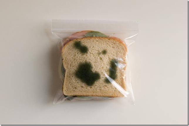 20-lunchbag0