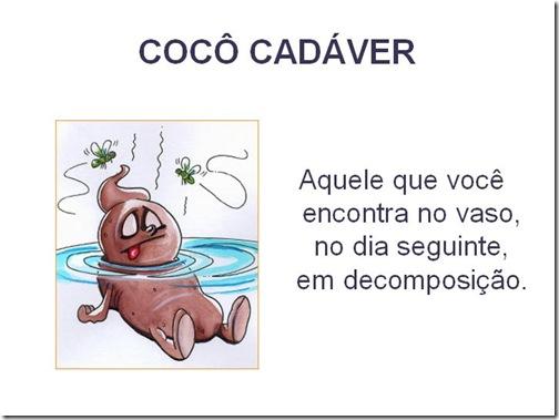 Cocô tipos (3)