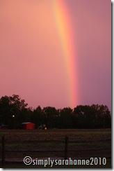 rainbows 005