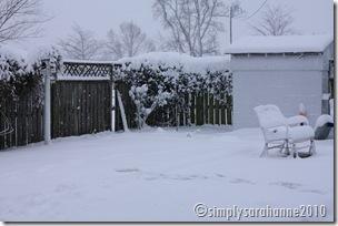 Christmas20103rdSnow2010 123