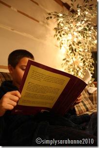 Christmas20103rdSnow2010 028