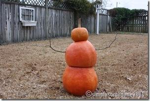 Christmas20103rdSnow2010 101