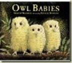 owlbabies