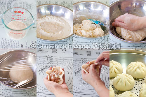 Steamed Pork Buns Procedures