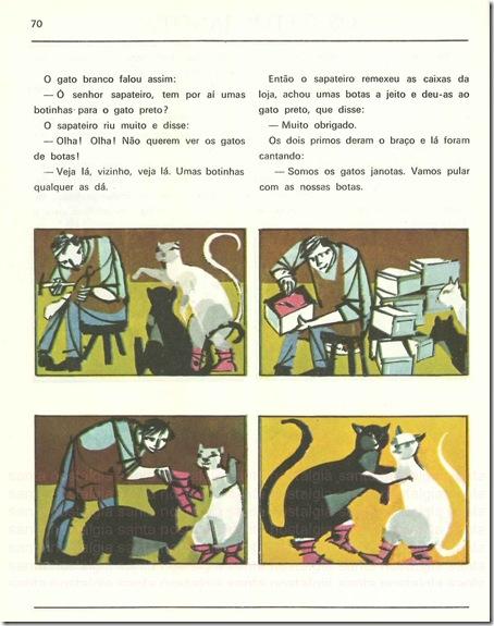 gatos janotas sn2