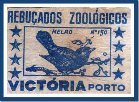rebucados zoologicos santa nostalgia