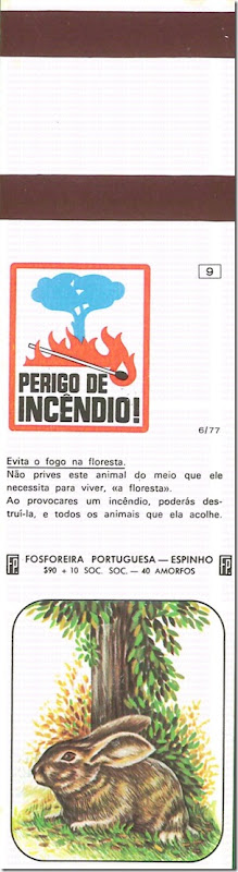 filuminismo perigo incendio santa nostalgia 9