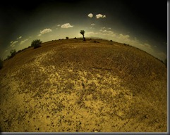 This_Parched_Earth____by_mrcool256