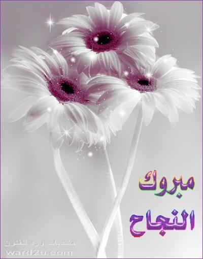 الف مبروك الترقيه حبيبتنا نااانو