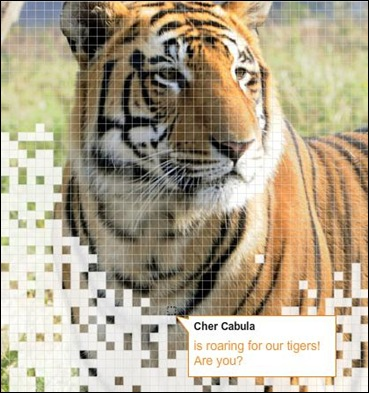 cher cabula tiger help