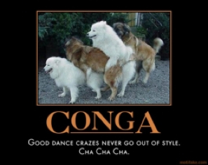 conga-horizontal-bop-fir-example-demotivational-poster-1256048963.hwO2EXxYh4s7.jpg