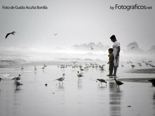 Fotos Chile II