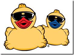 ducks-787976